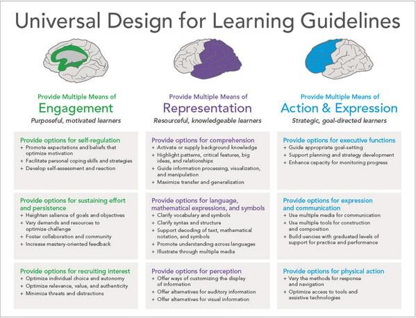 universal design for learning library instruction