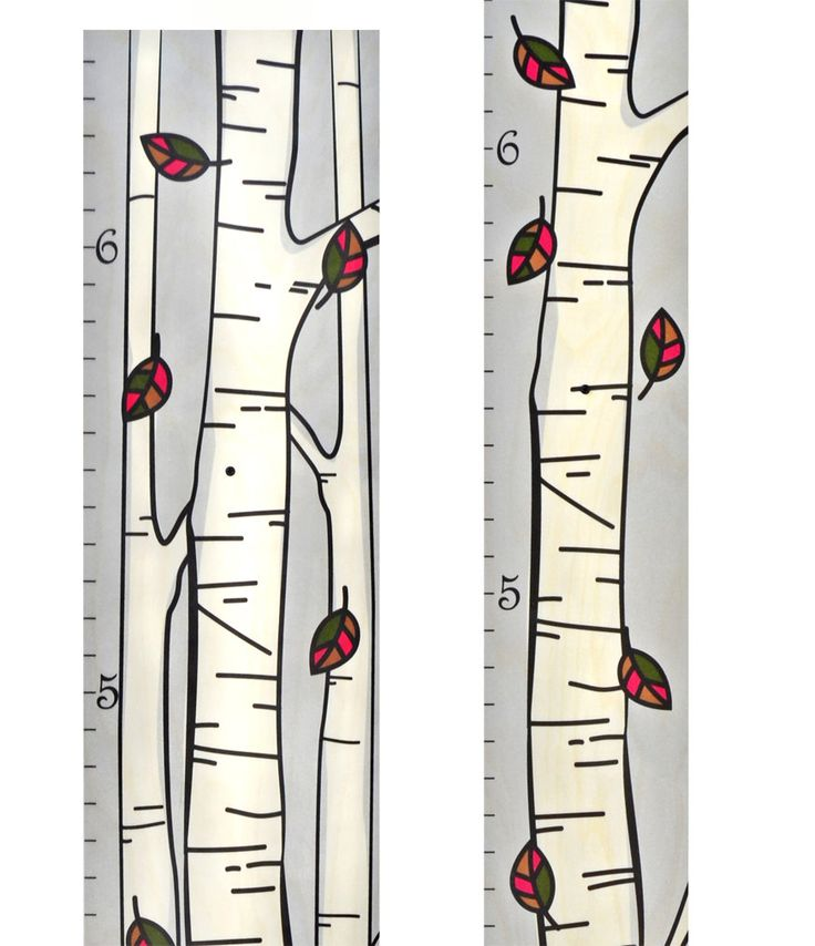 instructions on how to measure tree height