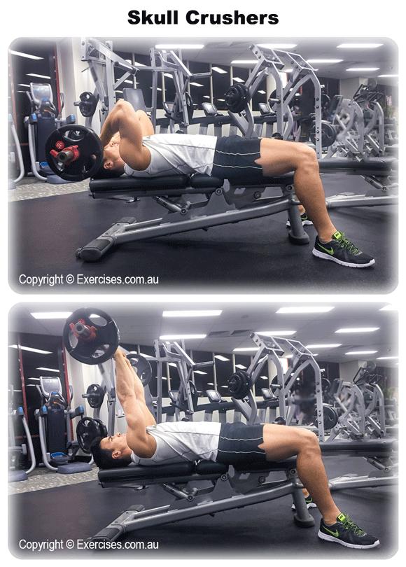 skull crushers exercise instructions