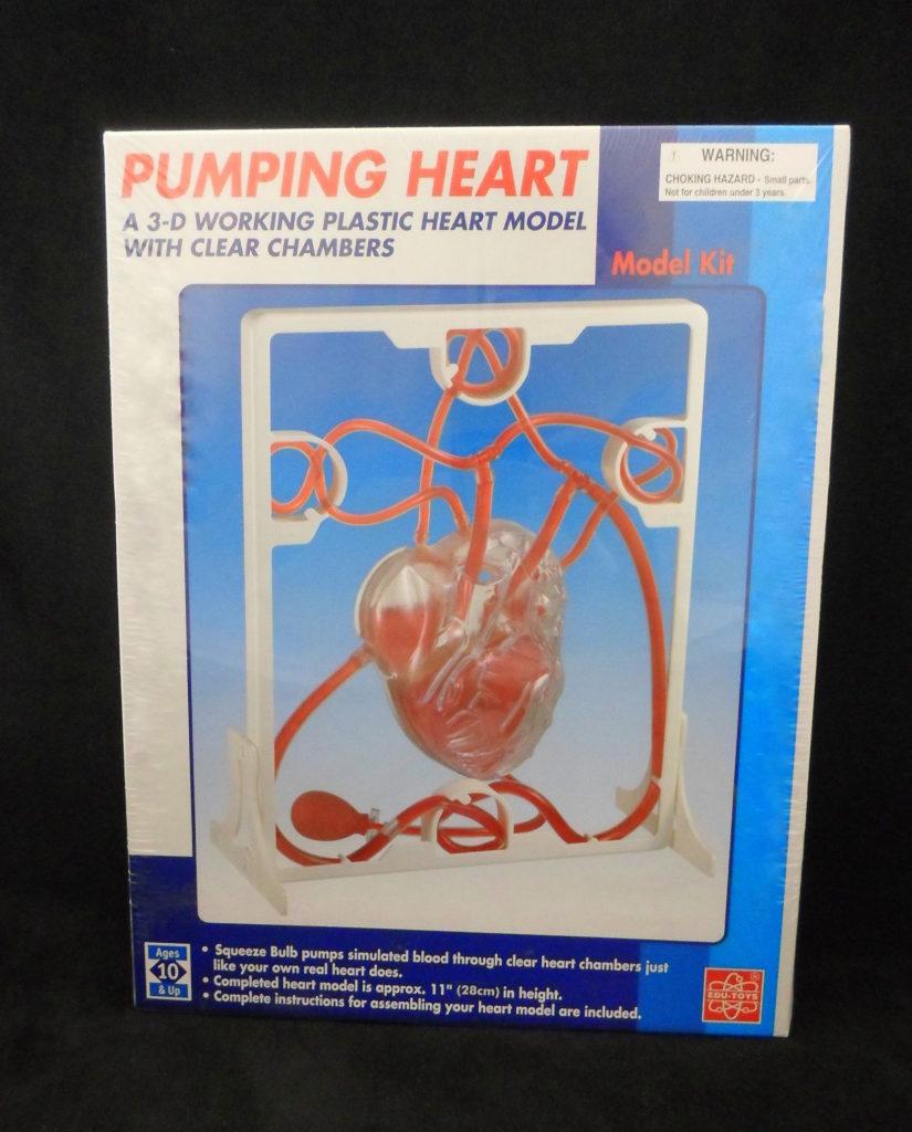 pumping heart model kit instructions