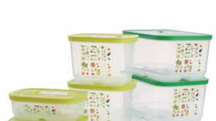 tupperware intelli frais instructions